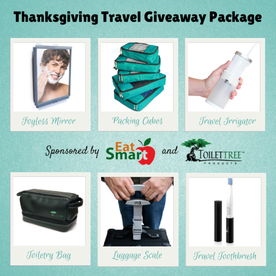 thanksgiving-travel-essentials-giveaway