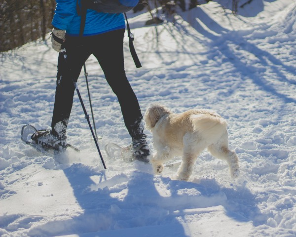 Tips to Keep Active During Cold Winter Months