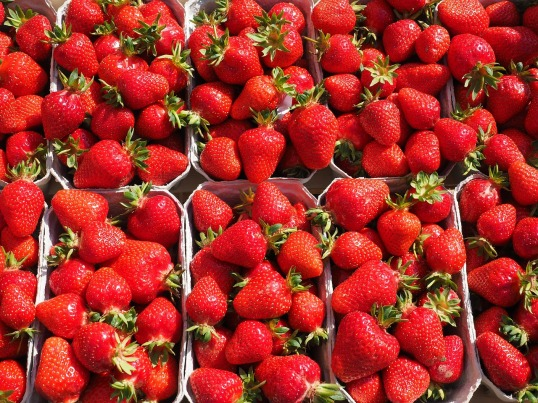 strawberries-499118_1280