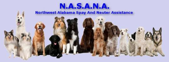 Northwest Alabama Spay And Neuter Assistance