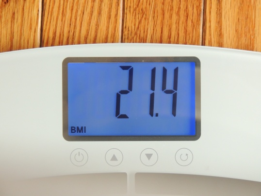 eatsmart-bodycheck-bodyfat-scale-bmi