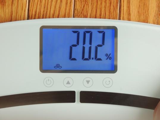 eatsmart-bodycheck-bodyfat-scale-bodyfat