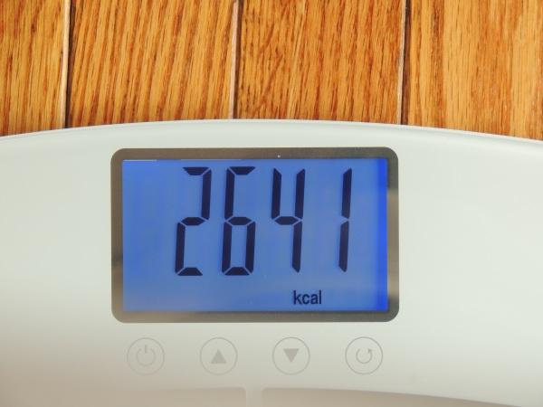 eatsmart-bodycheck-bodyfat-scale-cal