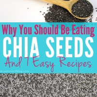 Why You Should Be Eating Chia Seeds and 7 Easy Recipes