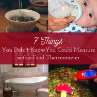7 Things You Didn't Know You Could Measure with a Food Thermometer