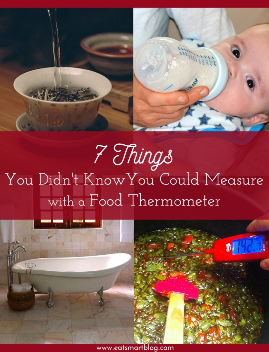 7 uses for food thermometers