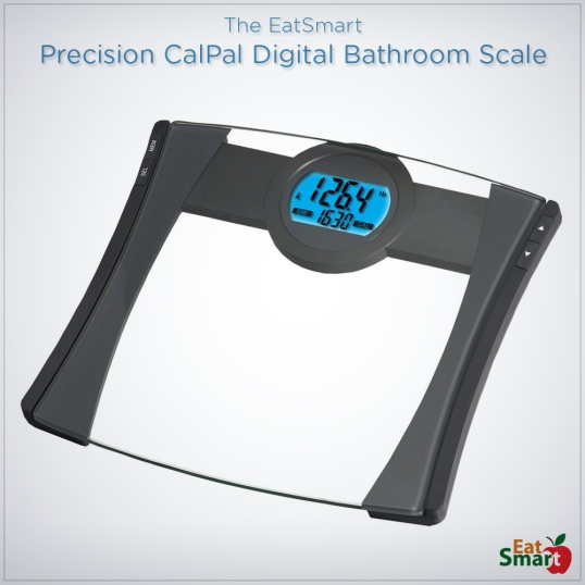 The Ultimate Bathroom Scale Guide – 2017 Edition