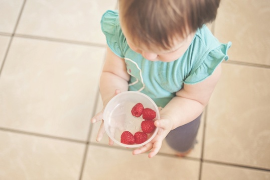 baby holding raspberries