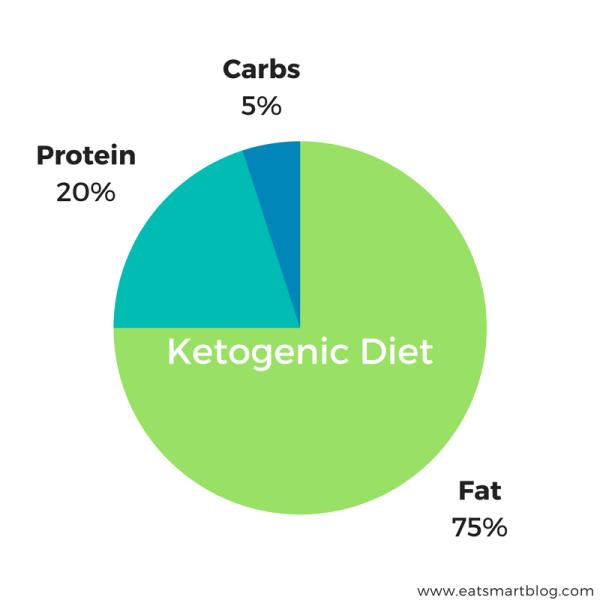 ketogenic diet graph